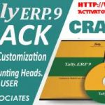 Tally ERP 9 (2021) Crack Patch Free Download [Updated]